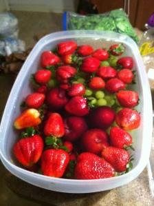 Fruit rinse